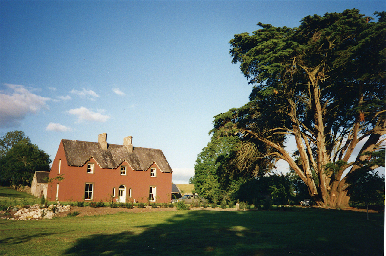 Ballycraggan, 1998, with 300 year cedar tree